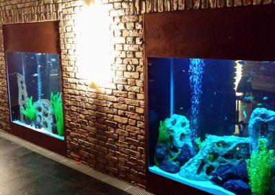 Akwaria w stylu Malawi 1200 L i 1400 L w Hotelu Alter w Lublinie